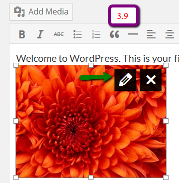add media 3.9 What are the Expected Changes in WordPress 3.9 As Compared to 3.8?